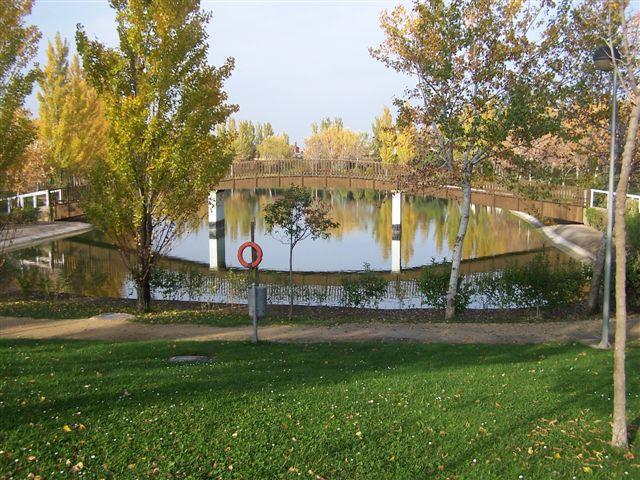 Zonas comunes (lago)