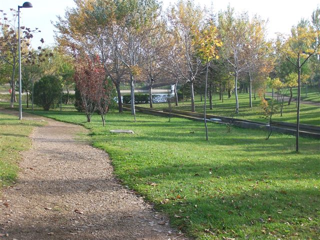 Zonas comunes (paseo)